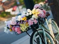 Lai puķes ilgāk stāvētu